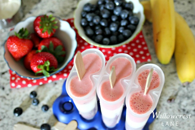 willowcrest lane smoothie pops